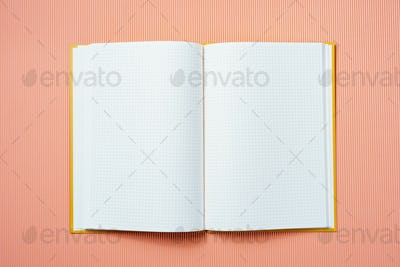 Opened notebook on a champagne background