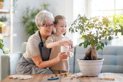 Family caring for plants.