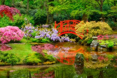 Japanese garden, Park Clingendael, The Hague, Netherlands