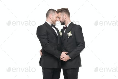 homosexual couple of grooms in suits able to kiss isolated on white