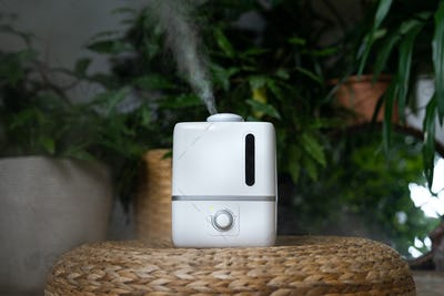 Closeup of air humidifier in home garden during heating period, plant care.