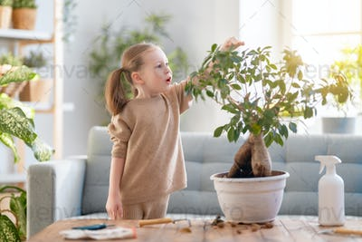 child is caring for plants