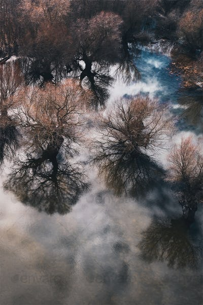 Aerial view of woodland floodplain landscape from drone pov