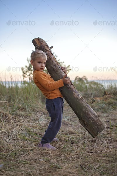 Family local getaway. Kid gathering wooden logs for bonfire at campsite, active lifestyle