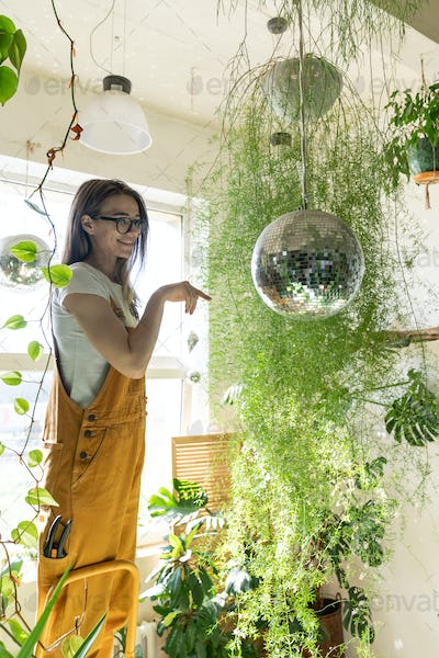 Woman gardener standing on stepladder, touches the hanging disco ball. Indoor cozy garden at home