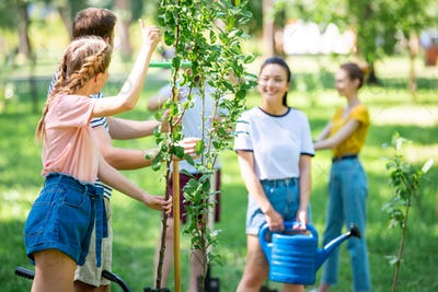 young people planting new trees and volunteering in park together