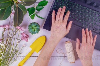 Female hands are typing on laptop keyboard. Gardening, home gardening, plant growing, hobby