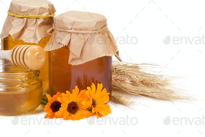 pot of honey and flowers on white