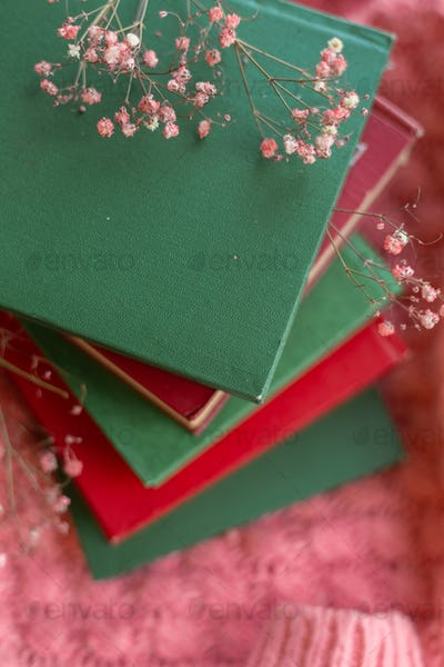 A stack of red and green books with dry flowers on a pink warm knitted sweater background