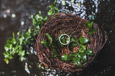 Two wedding rings in handmade wicker nest on wedding ceremony