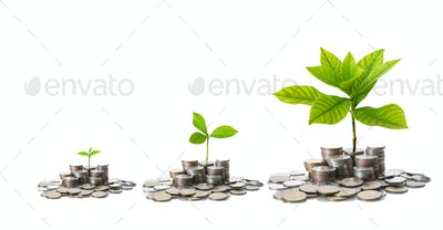 stacks of mix coins with difference size of seed on white background, Business Investment concept