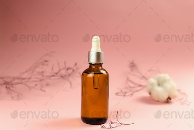 Bottles of cosmetic oil with dried herbs on pink background