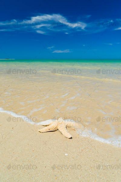 Sandy summer beach with blur sea background
