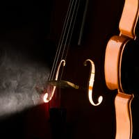 Elegant violin with smoke
