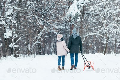 back view of couple with sledge holding hands while walking in snowy park