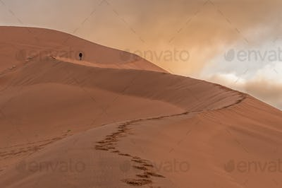 View of the sickle shaped sand dune next to Sossusvlei