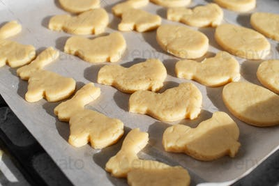Ready for baking cookies cut in shape of rabbit, egg and chicken on parchment paper