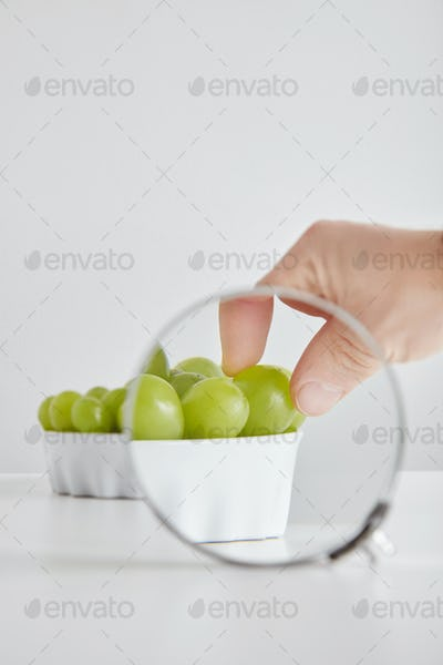 Magnified hand takes one grape