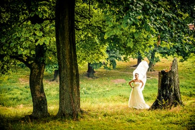 beautiful bride with large veil and classic dress near the old tree