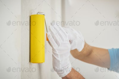 Vinyl Wallpapers Wall Application Using Roller