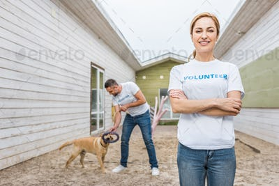 volunteer of animals shelter playing with labrador dog, woman looking at camera