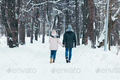back view of couple holding hands and walking in winter park