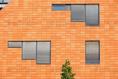 Orange facade with windows