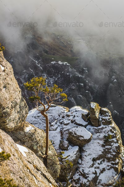 Peak of Demerdji mountain in the fog