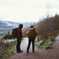 People trekking in the forest