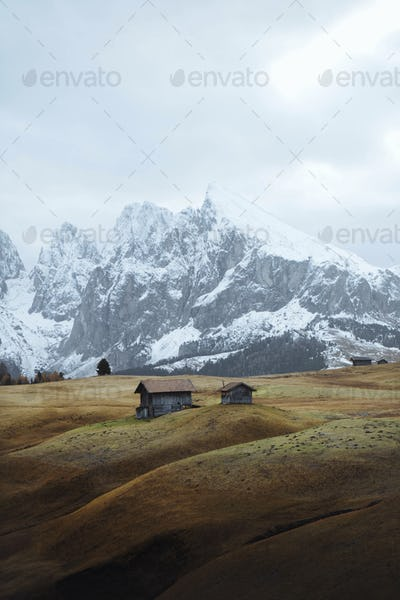 Alpine meadow in Italy