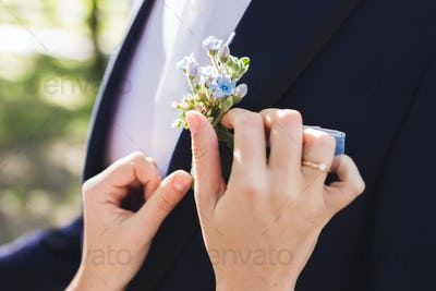 Bride helps the groom to wear boutonniere closeup outdoors