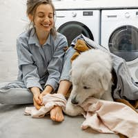 Woman with dog having fun in the laundry room at home