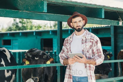 handsome bearded farmer holding digital tablet and looking at camera while working in cowshed
