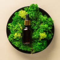 Serum bottle with moss at natural background.