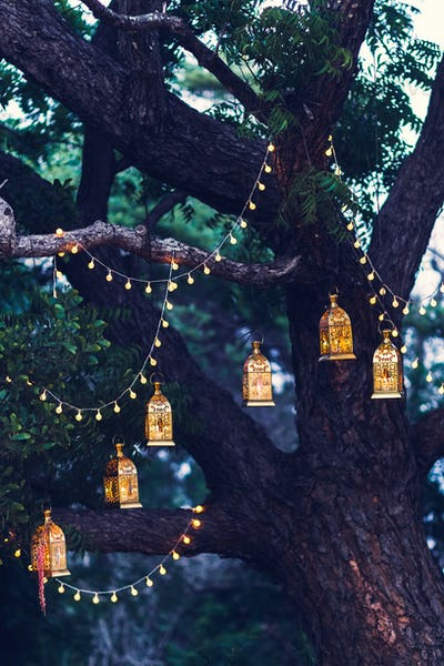 Night wedding ceremony with a lot of candles and vintage lamps on big tree.  Cross-process toning