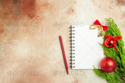 top view open notepad with green branch on light background xmas new year photo color free place