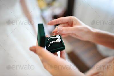 silver elegant earrings for bride