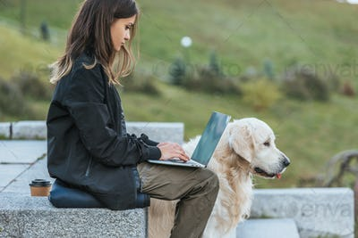 side view of freelancer using laptop while sitting with dog in park