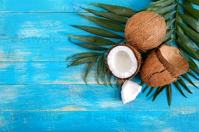 Whole coconut, shell, green palm leaves on a blue