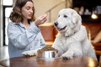 Woman feeding a dog with dry food