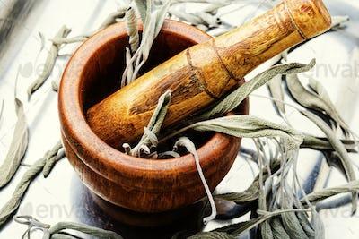 Dry sage leaf,herbal medicine