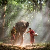 Elephant and senior couple in Thailand