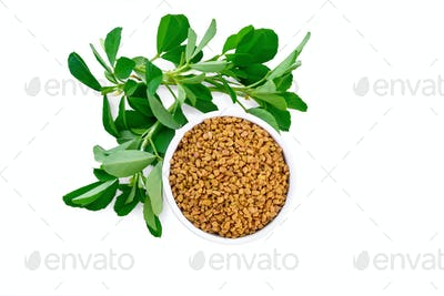 Fenugreek with green leaves in bowl top