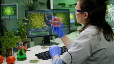 Biologist researcher woman analyzing vegan beef meat for microbiology experiment