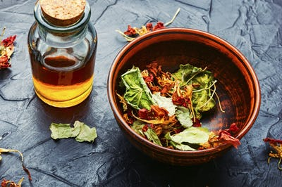Nasturtium in herbal medicine,homeopathic herbs