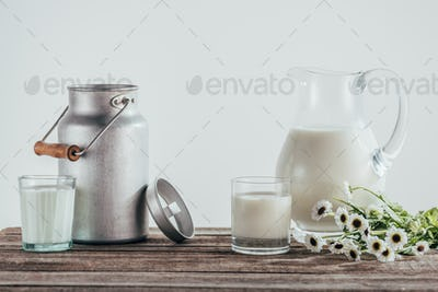jugs and two glasses of fresh milk with chamomile flowers on shabby wooden tabletop