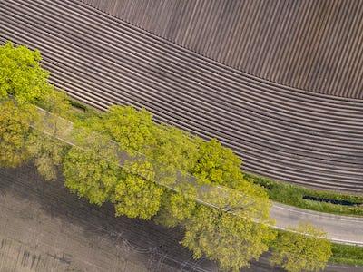 Sown potatoe field aerial