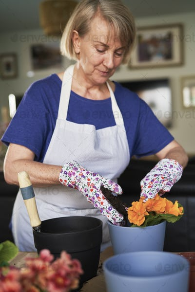 Flower gardening during isolation period