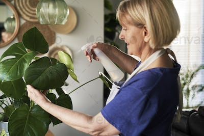 Woman taking care about plants at her house