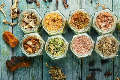 Medicinal herbs in herbal medicine
